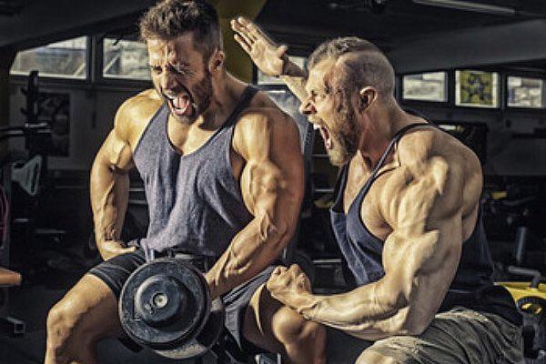 high intensity bodybuilding