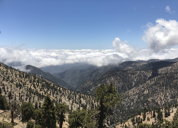 The view from the top of Mt Baden-Powell was glorious, but the hike up was excruciating with stabbing heel pain from plantar fascitis