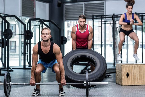 is a full body workout better than a split routine