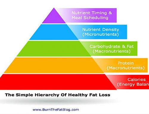 The Simple Hierarchy Of Fat Loss
